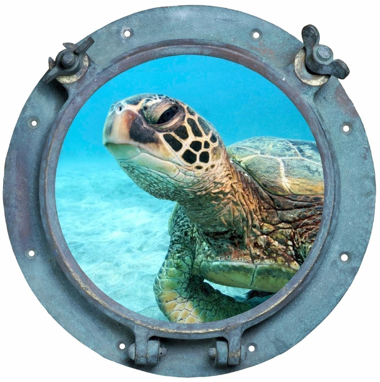 Peek A Boo Sea Turtle Porthole Vinyl Decal