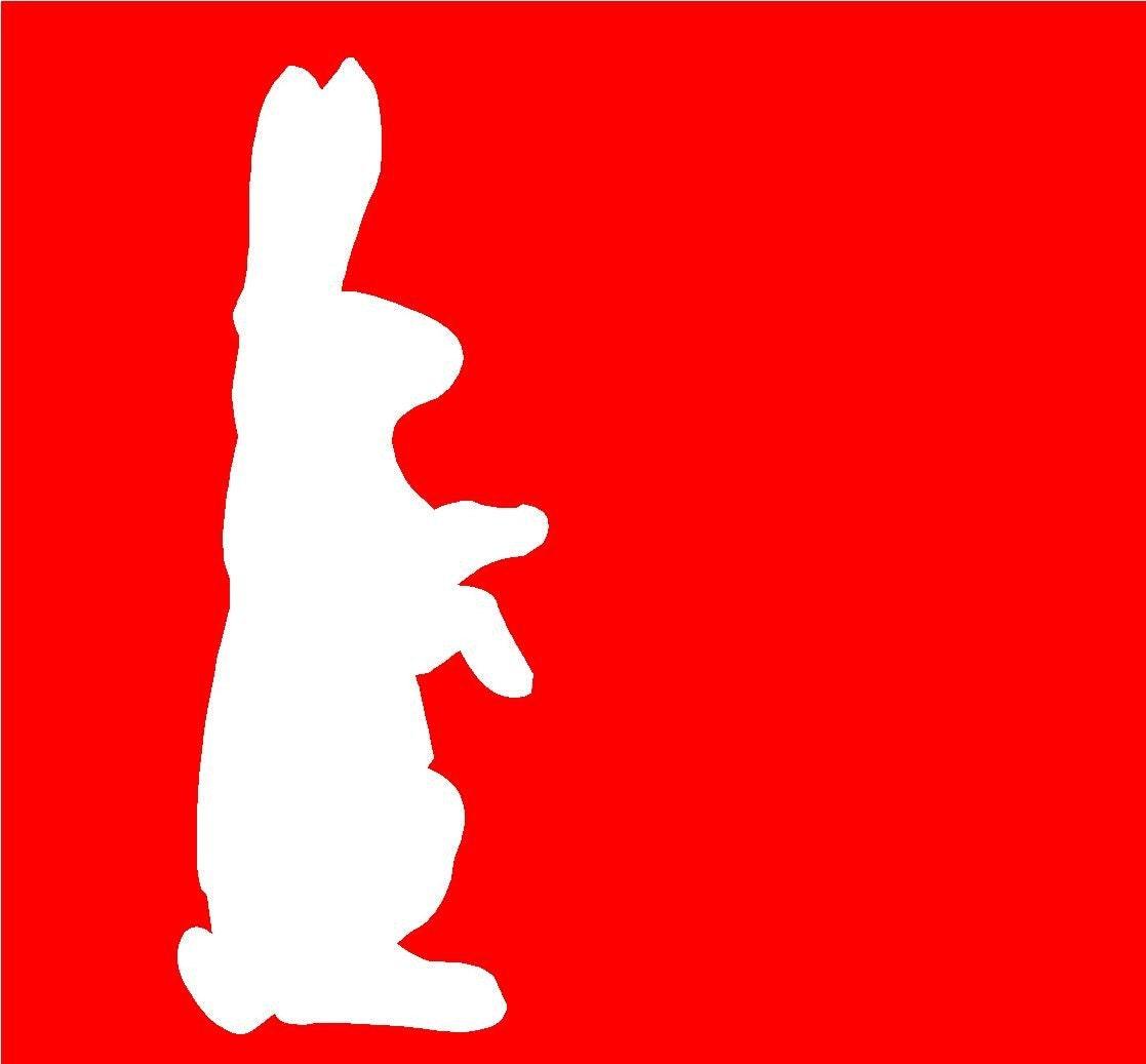 White Rabbit Silhouette PictureWhite Rabbit Silhouette