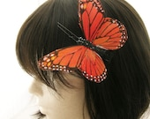 Grand Monarch Orange Butterfly feather hair clip - vibrant color fascinator