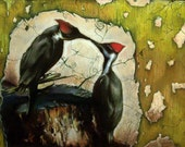 Kissing Woodpeckers - Pastel - 8x10 Print - By Jeffrey Richter