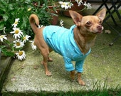 Pattern for Chihuahua Hoodie size petite