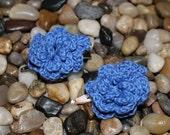 Blue Flower Hair Clips- set of 2