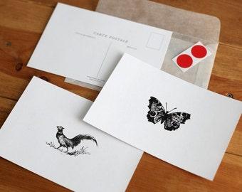 Vintage Rooster\/Butterfly Carte Postale