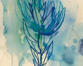 Blue Wash Protea fine art print - a Sweet William illustration on archival paper. Small and Medium size