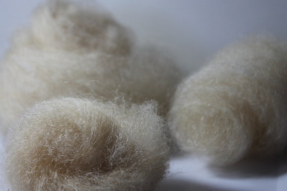 Combed Top, Navajo Churro Lambswool, Cloud Sampler Pack, Natural, Undyed, gorgeous fiber, tot. wt. 3/8 oz