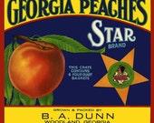 Georgia Peaches Refrigerator Magnet - FREE US SHIPPING