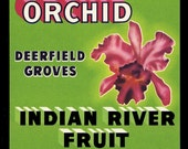 Deerfield Florida Orchid Crate Label Refrigerator Magnet - FREE US SHIPPING