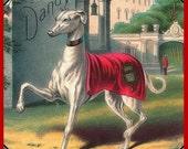 Dandy Royal Greyhound Dog Refrigerator Magnet