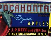 Staunton Virginia Pocohanta Indian Apple Can Label