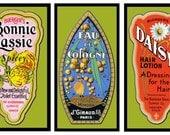 Three Vintage Perfume Refrigerator Magnet - FREE US SHIPPING