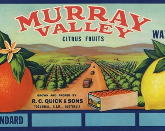 Murray Valley Australia Orange Lemon Fruit Crate Label