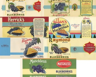 Seven Different Blueberry can labels