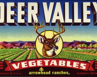 Deer Valley Vegetable Crate Label from Glendale Arizona