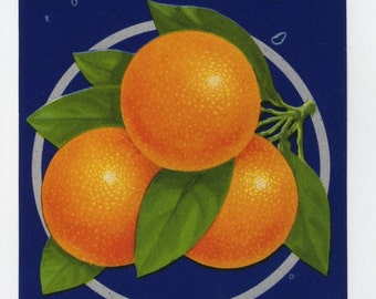 KEYSTONE CLA Florida citrus crate label, Belleview