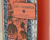 Extract of Pumpkin Halloween Card