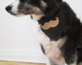 Curly Moustaches Are Not Just for French Poodles reversible embroidered dog bandana, size SMALL