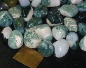 10 tumbled green and white Sardonyx, stones, natural, specimen, wire wrapping, supplies