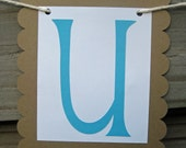 Just Married Banner - Bright Blue