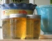 Organic Scuppernog Grape Jelly  8 oz Jar
