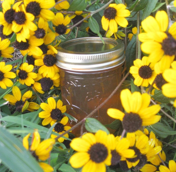 Organic White Wine Grape Jelly 8oz Jar