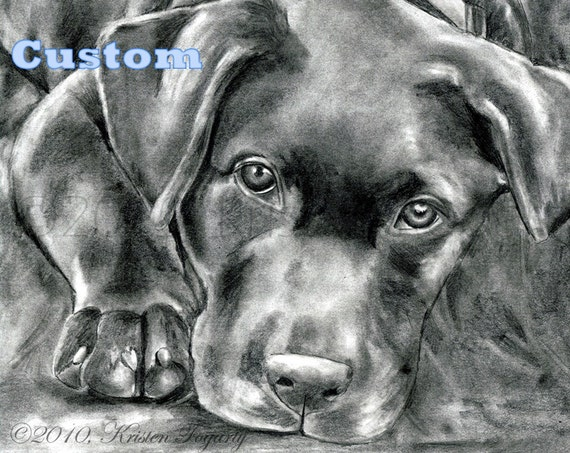 Custom, 8x10, Pet Portrait, Graphite Drawing, Archival White Paper, Realistic depiction of your pet. Photo to Drawing