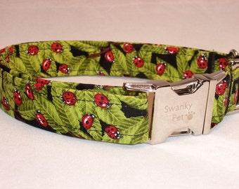 Ladybug Print Dog Collar by Swanky Pet