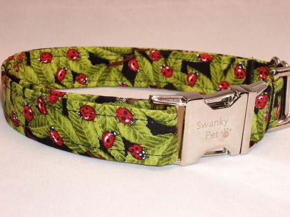Ladybug Print Dog Collar by Swanky Pet