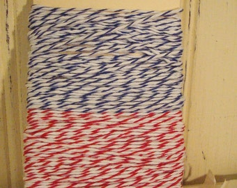 Blue and Red Bakers Twine - 20 Yards