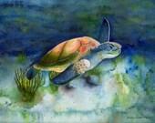 "Sea Turtle, 10"" x 8"" Print of Watercolor, Blue, Green"