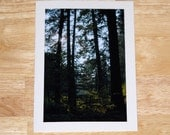 Photo Note Cards -- Create Your Own Set