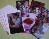The Darling Postcards (set of six postcards and envelopes)