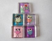 Fun Owls Square Glass Magnets Set of 5