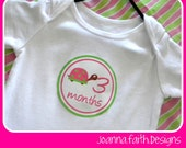 Onesie Month Stickers - Photo Prop - You choose theme and colors