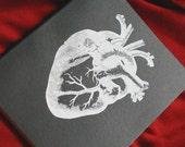Anatomiee  - Journal - Extra Large Moleskine