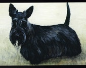 Scottish Terrier Dog Art Reproduction Postcard