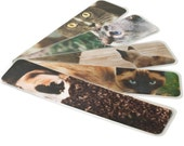 Set of 5 Cat Photo Bookmarks