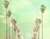 la la land. Los Angeles photograph California palm trees sunny day summer vacation blue mint green fine art print 5x5