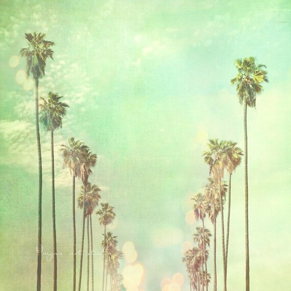 la la land. Los Angeles photography California palm trees sunny day summer vacation blue mint green fine art print  Myan Soffia