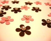 20 Daisies - Pink and Brown