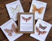 Moth Bookplates - Digital - Printable PDF