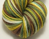 Hand-Dyed Worsted Yarn Peruvian Highland Wool- On the Trail