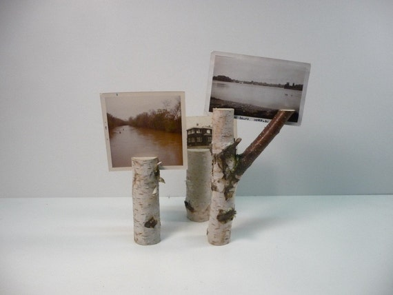 Twig Picture Holders (White Birch)