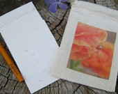 bloomies. 4 seeded wishes in a leap of faith canvas pouch