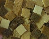 98 Piece Autumn Fall Shades of Brown Vitreous Glass Mosaic Tiles