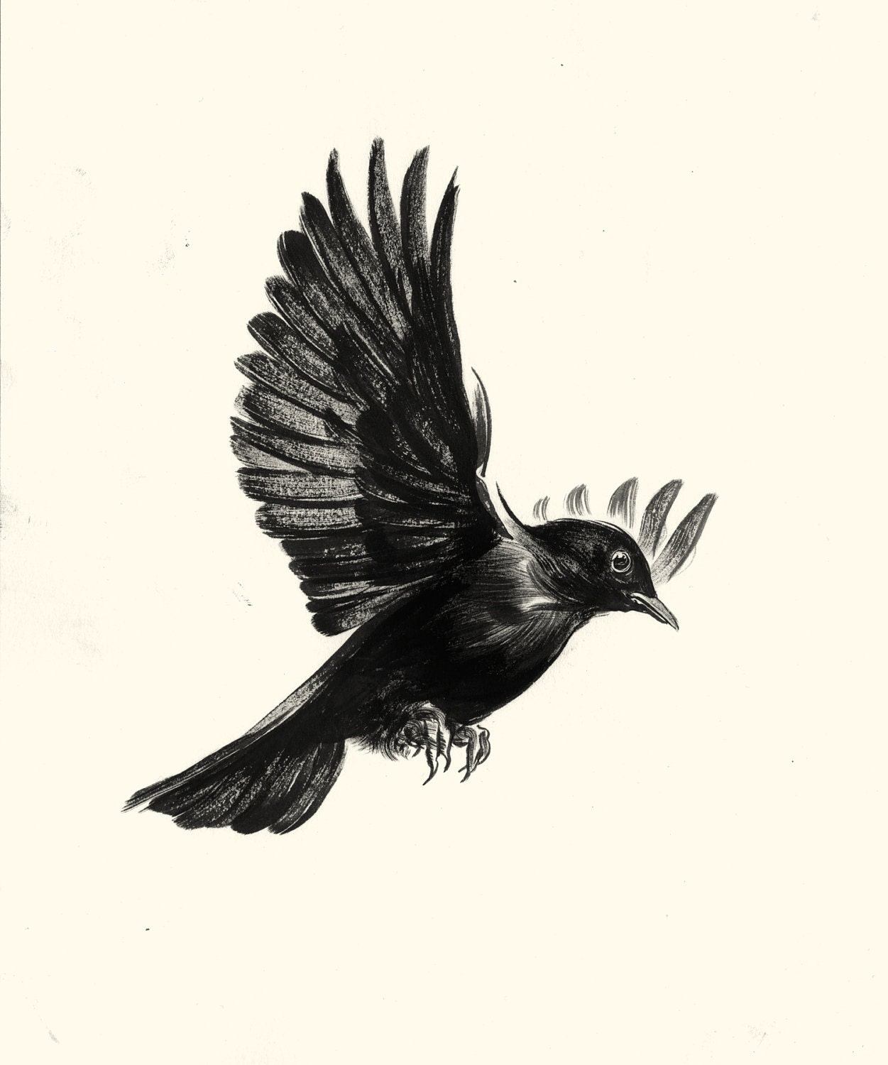 the black bird The blackbirds iridescent black plumage holds the energies of mysticism and magic druid legends say that the birds of rhiannan are 3 blackbirds which sit and sing in.