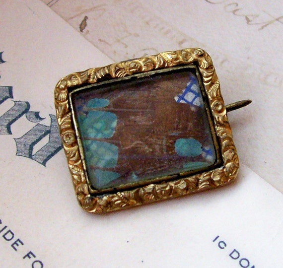 Antique brass butterfly wing under glass C clasp brooch