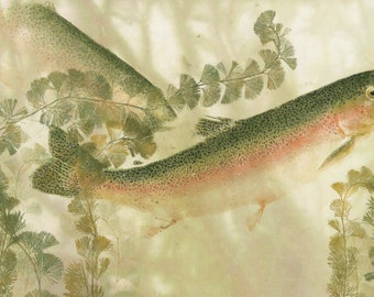 River Dreams- Limited edition reproduction of rainbow trout gyotaku