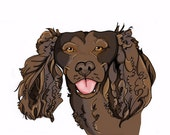 8x10 American Water Spaniel dogicature print by J.Bird