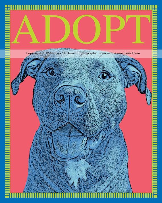 """ADOPT, Rescue (Pit Bull) Adoption, Metallic Print (8""""x10"""")"""
