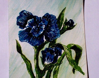 ACEO Iris of mixed media  ink pens and watercolor